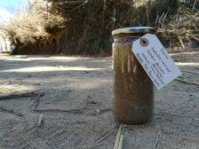 Flascó amb sauló de riera provinent de l'aiguabarreig de les rieres de Canyamars i del Far